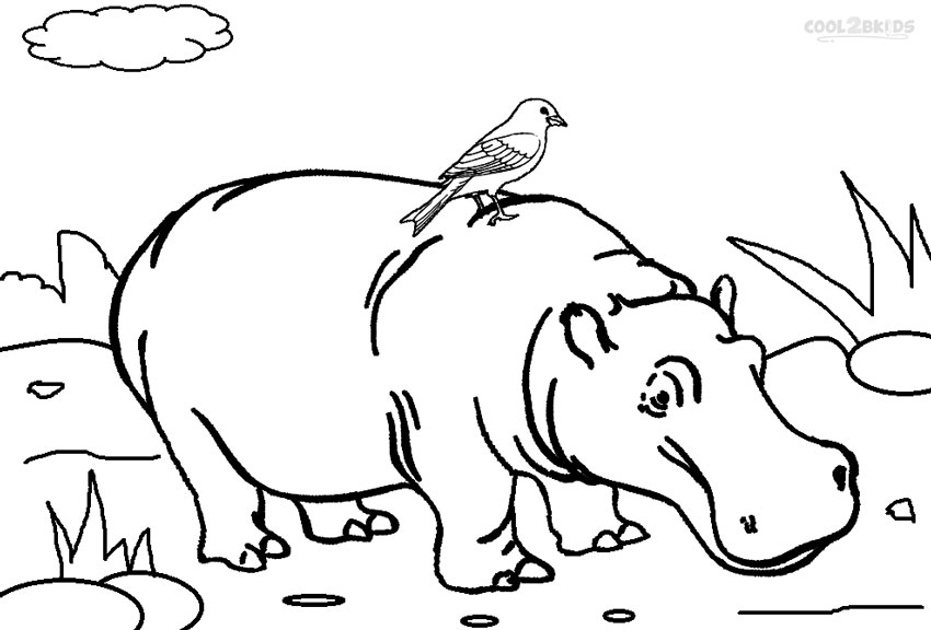 coloring pages hippo printable hippo coloring pages for kids cool2bkids pages hippo coloring 1 1