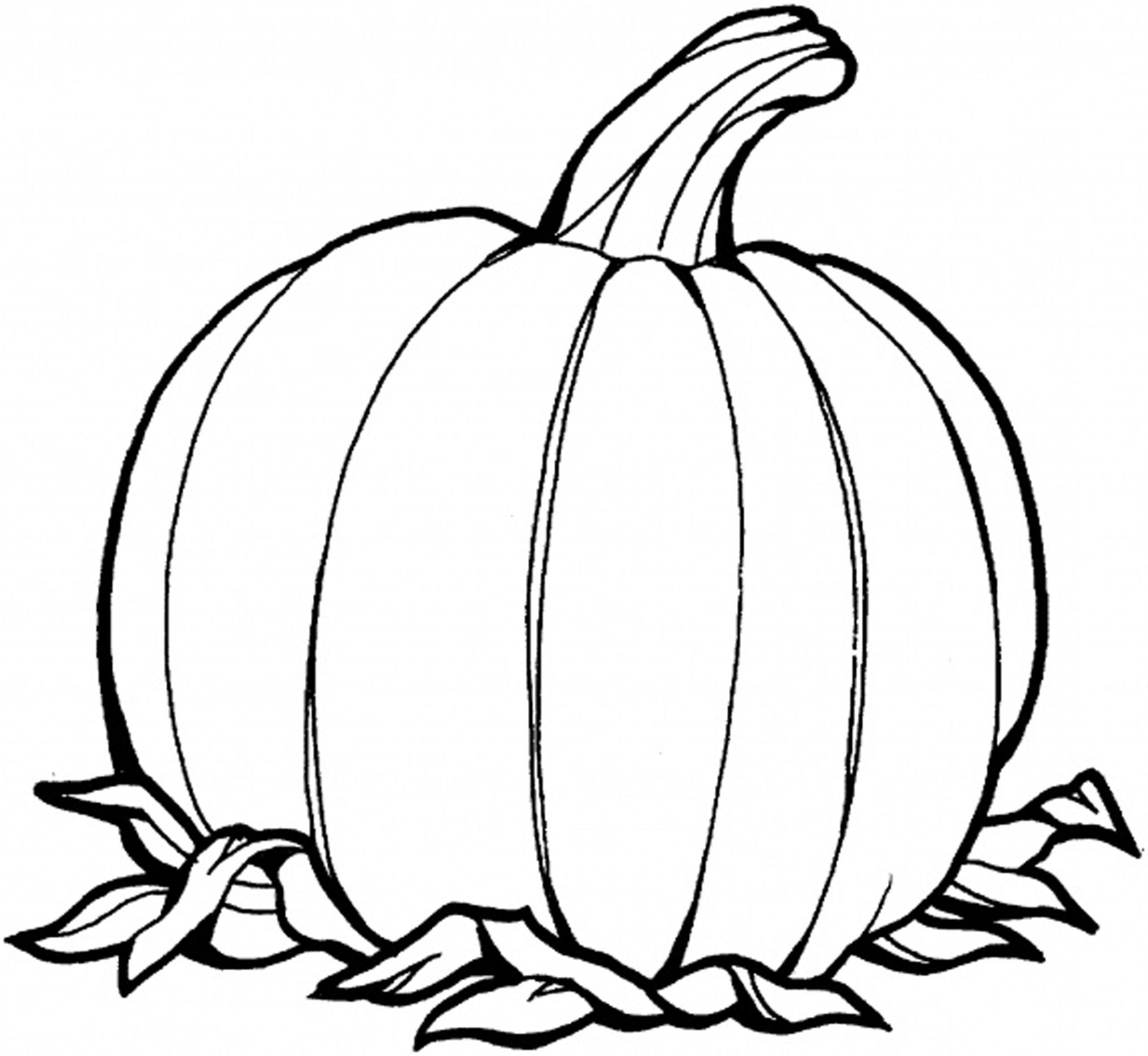 coloring pages of a pumpkin free printable pumpkin coloring pages for kids cool2bkids of pumpkin a pages coloring