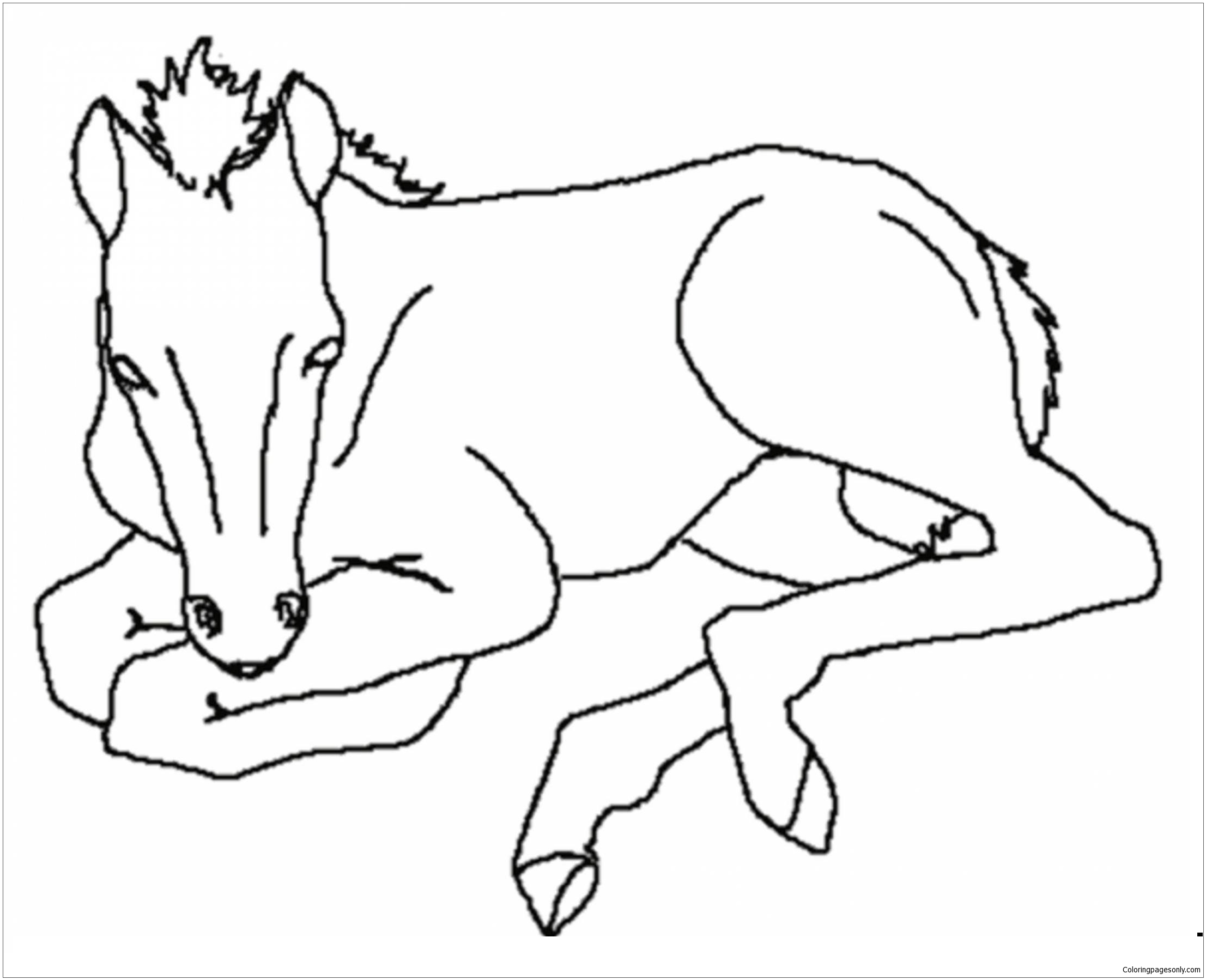 coloring pages of baby horses baby horse coloring pages coloring pages for kids horses pages of baby coloring