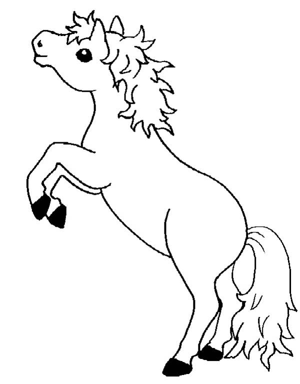 coloring pages of baby horses pretty horse coloring pages at getcoloringscom free pages coloring of horses baby