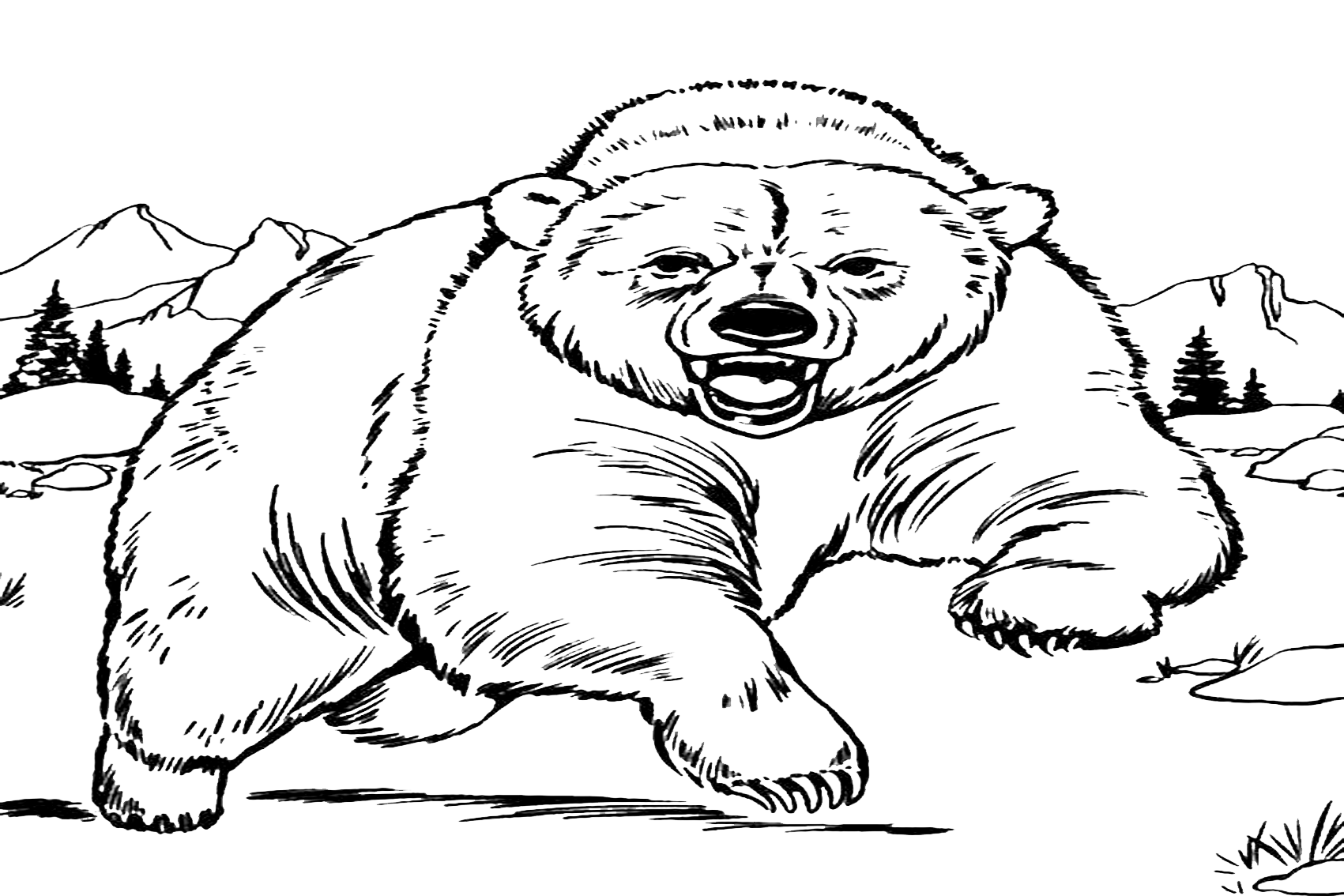 coloring pages of bears free bear coloring pages pages of bears coloring