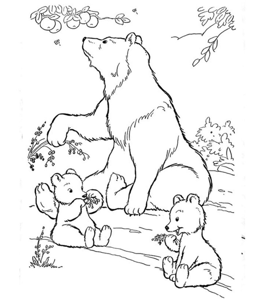 coloring pages of bears free printable bear coloring pages funsoke pages coloring of bears