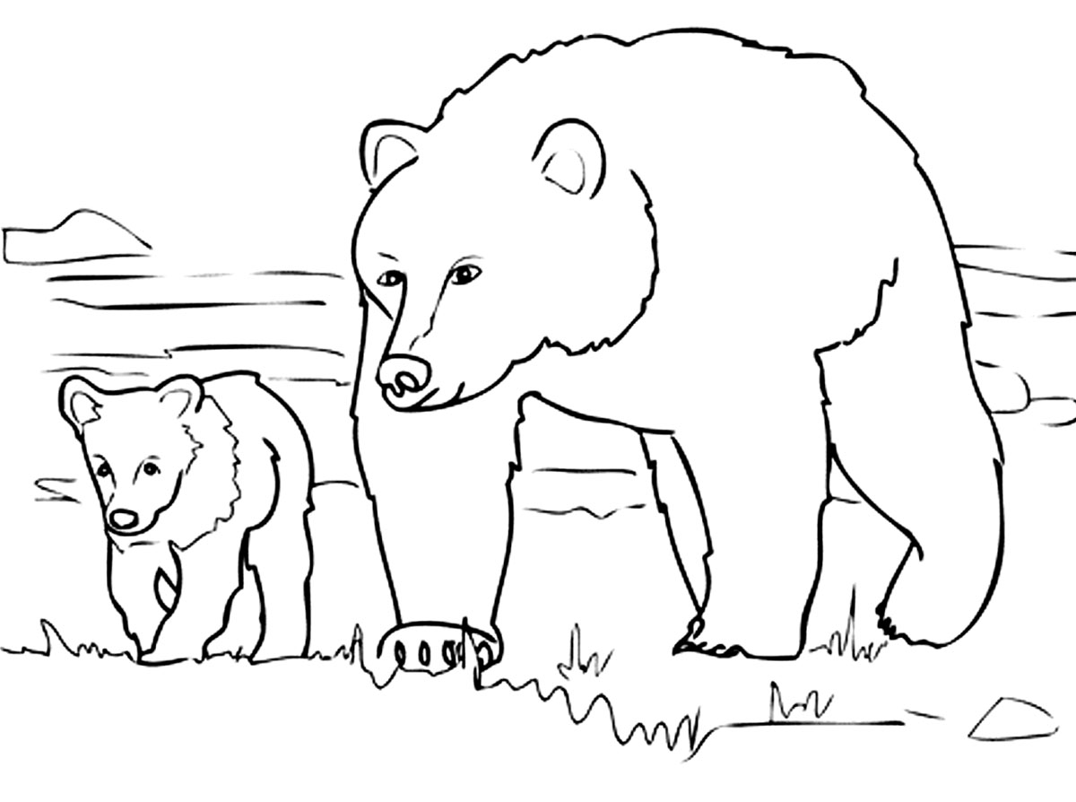 coloring pages of bears young bear bears adult coloring pages bears coloring of pages