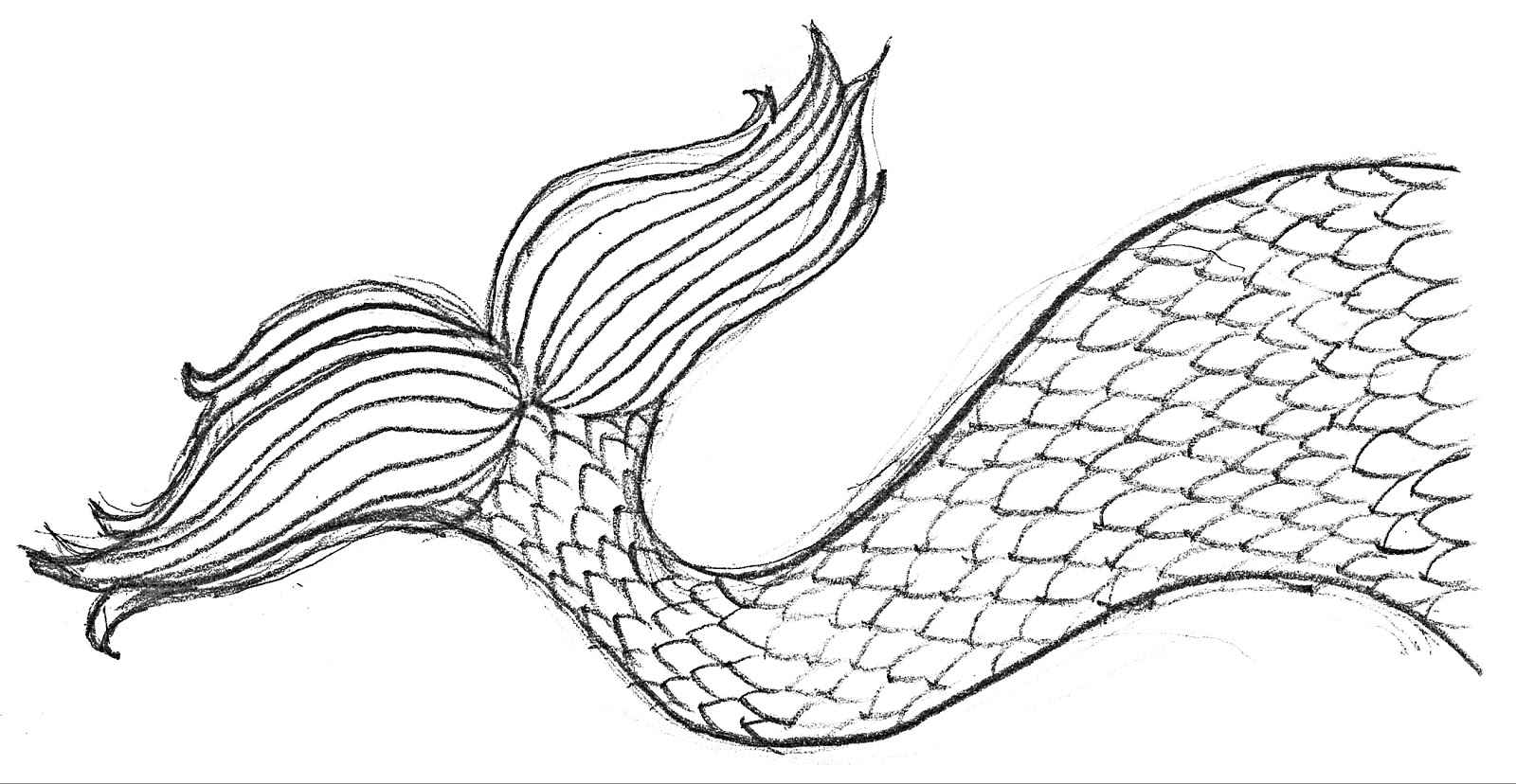 coloring pages of mermaid tails mermaid tail coloring page pages tails of mermaid coloring