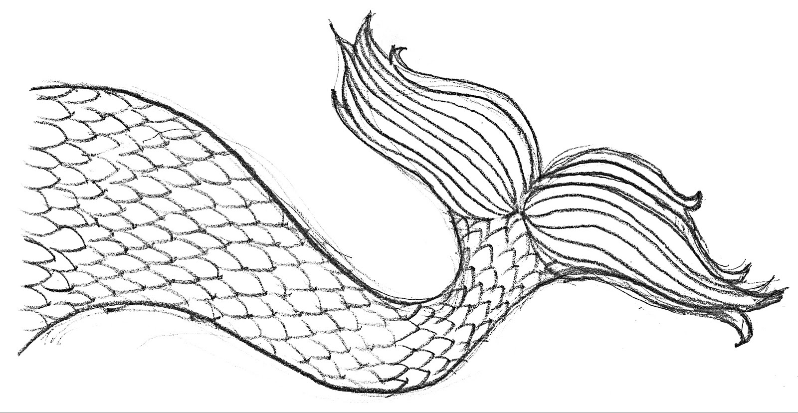 coloring pages of mermaid tails mermaid tail sheets coloring pages coloring tails mermaid of pages
