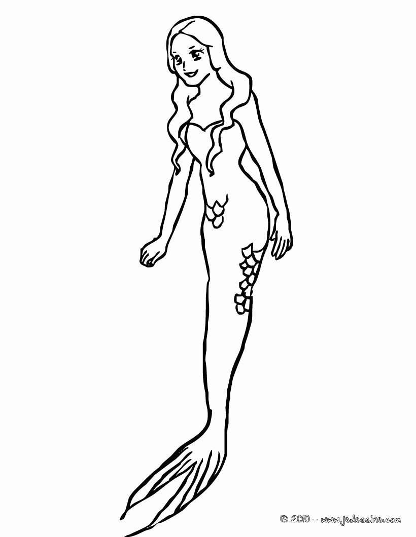 coloring pages of mermaid tails mermaid tails adult coloring page mermaid art adult tails coloring pages of mermaid
