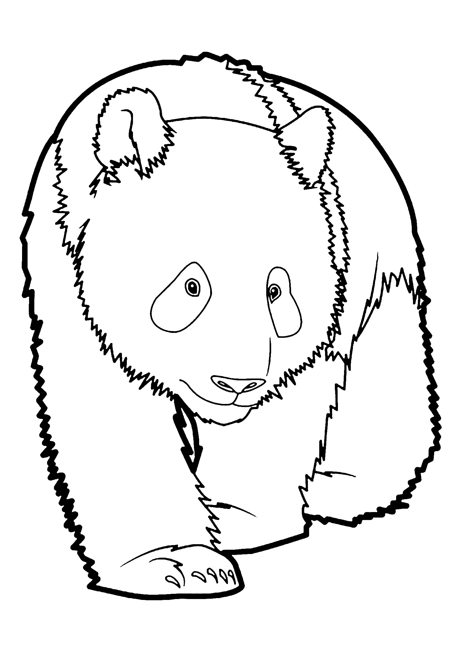 coloring pages of pandas pandas to print for free pandas kids coloring pages coloring pandas of pages