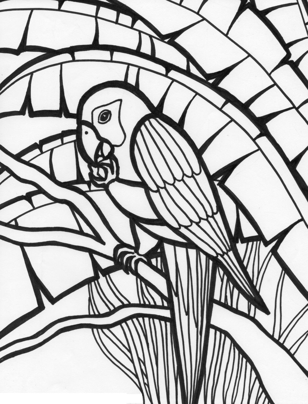 coloring parrot for kids free printable parrot coloring pages for kids animal place parrot coloring for kids