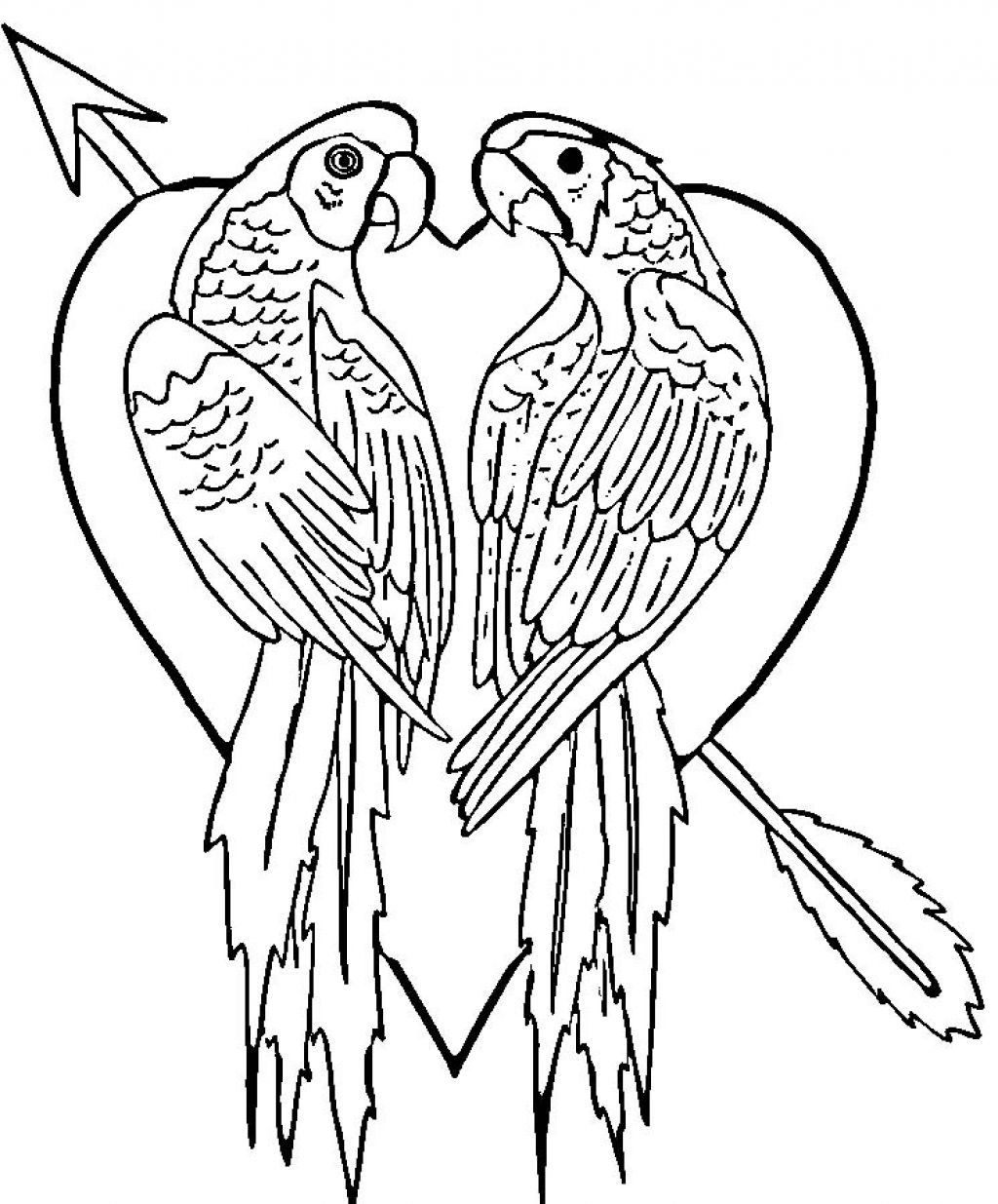 coloring parrot for kids free printable parrot coloring pages for kids kids for coloring parrot