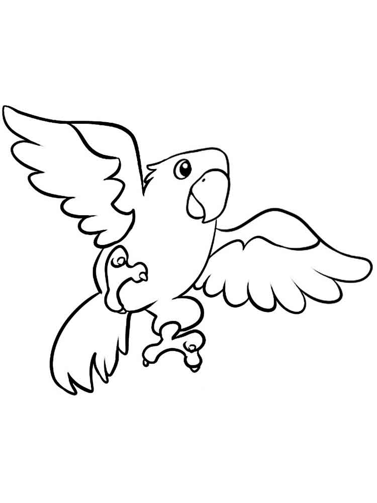 coloring parrot for kids parrot coloring pages coloring pages to download and print parrot coloring for kids