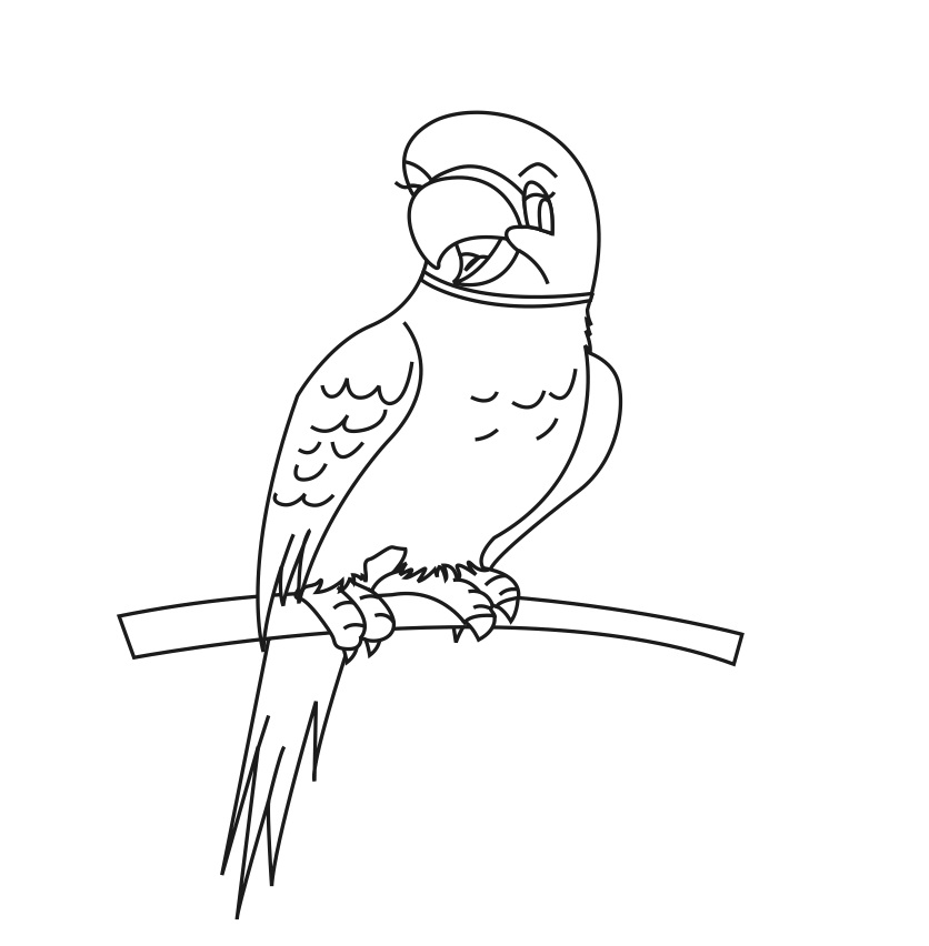 coloring parrot for kids parrot on branch coloring page parrot on branch coloring parrot for kids coloring