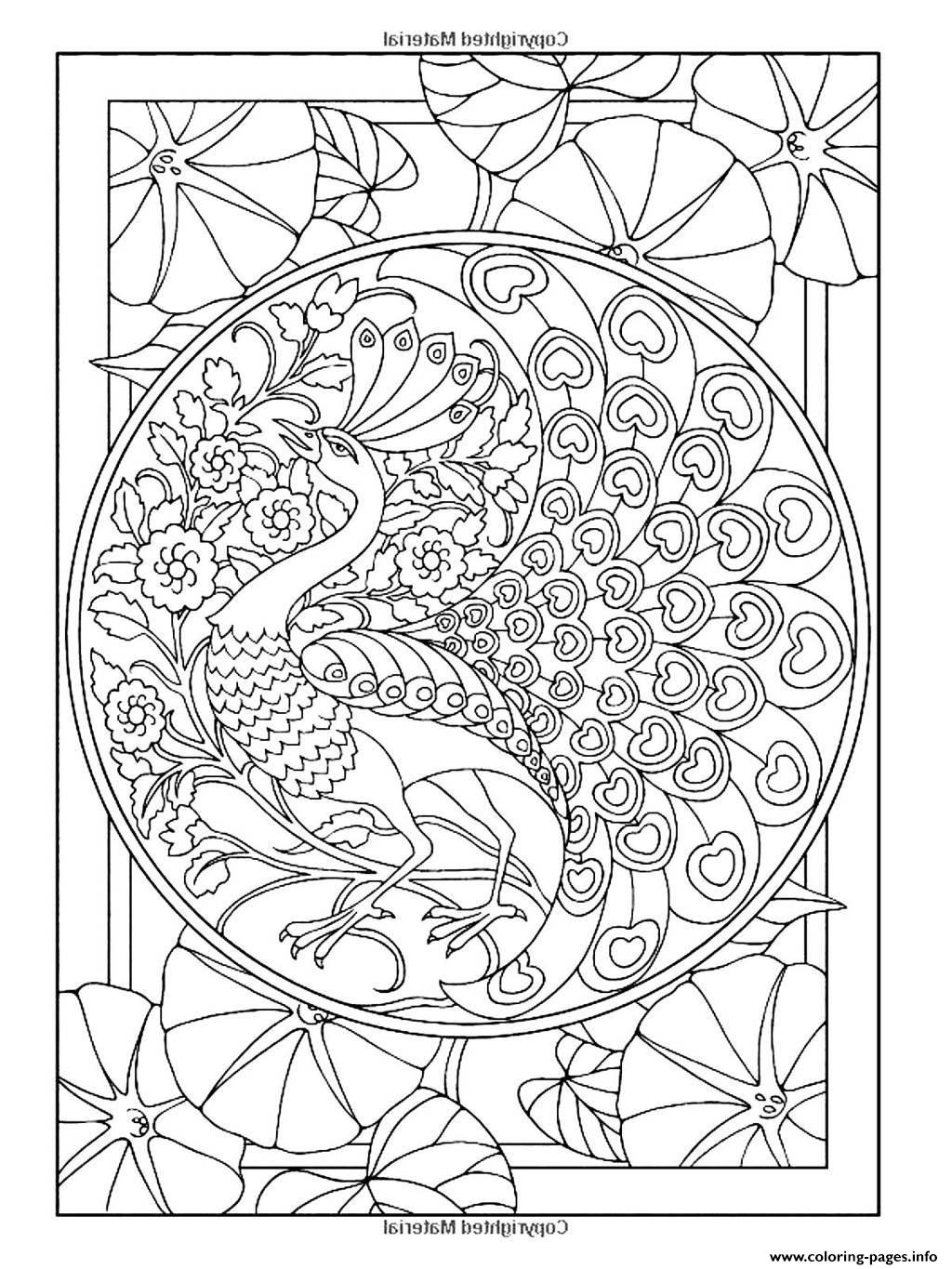 coloring peacock color page peacock coloring pages to download and print for free peacock coloring page color