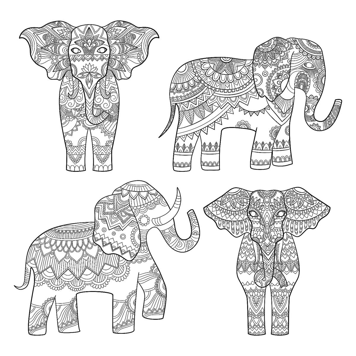 coloring pics of elephant elephant coloring pages 12 free fun printable elephant of pics elephant coloring