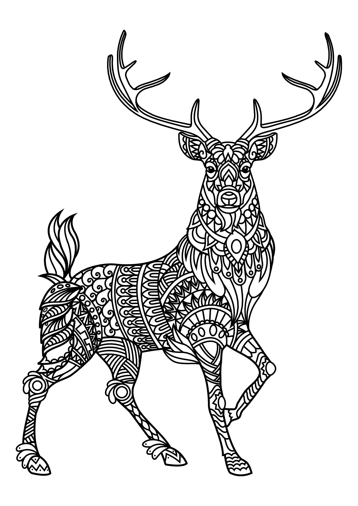 coloring picture color for kids free printable tiger coloring pages for kids for picture coloring kids color