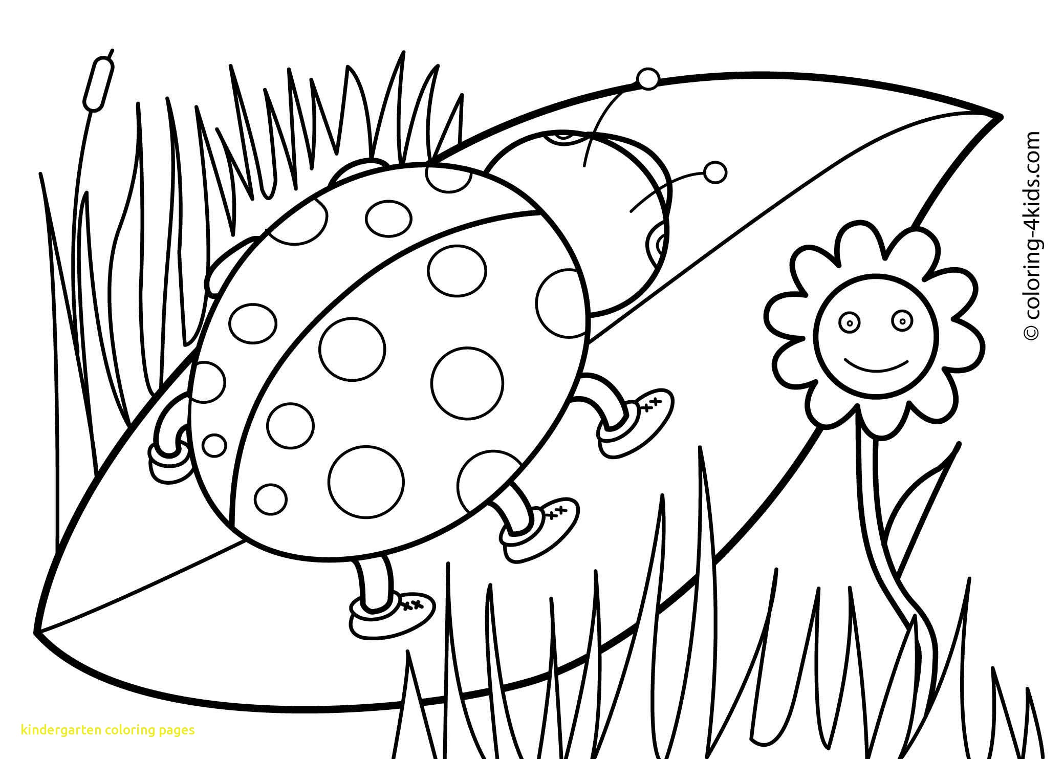 coloring picture kindergarten free printable kindergarten coloring pages for kids picture coloring kindergarten
