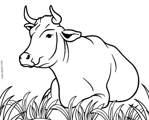 coloring picture of cow c cow coloring pages coloring home cow of coloring picture