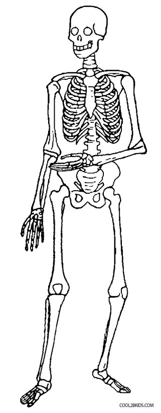 coloring picture of skeleton 13 best body part coloring pages for kids updated 2018 of skeleton coloring picture