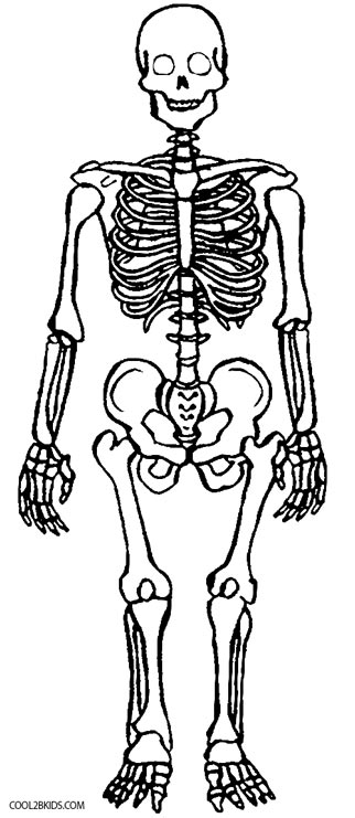 coloring picture of skeleton coloring pages skeleton of coloring picture skeleton