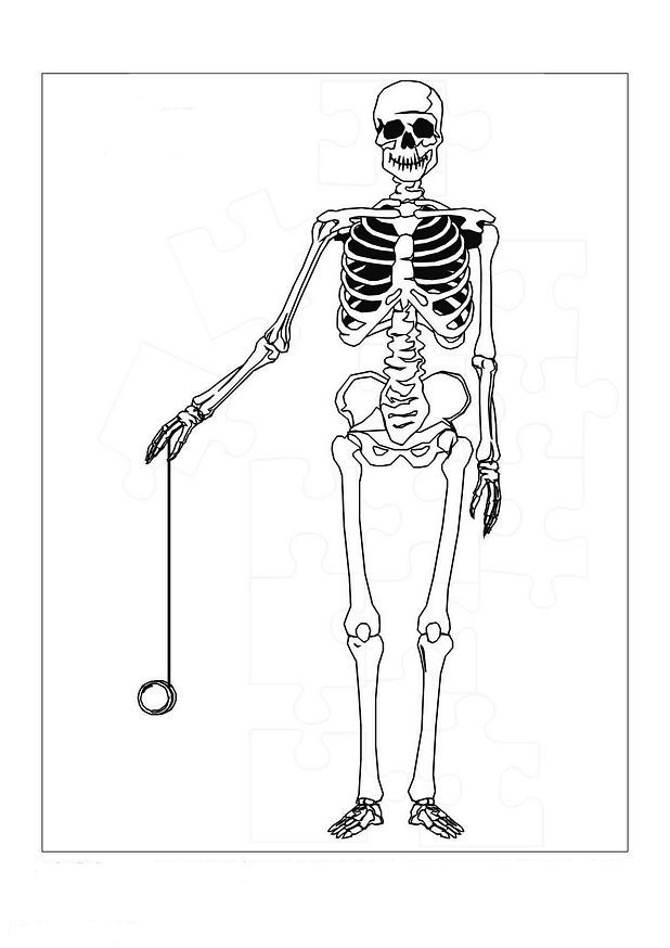 coloring picture of skeleton printable skeleton coloring pages for kids skeleton coloring picture of