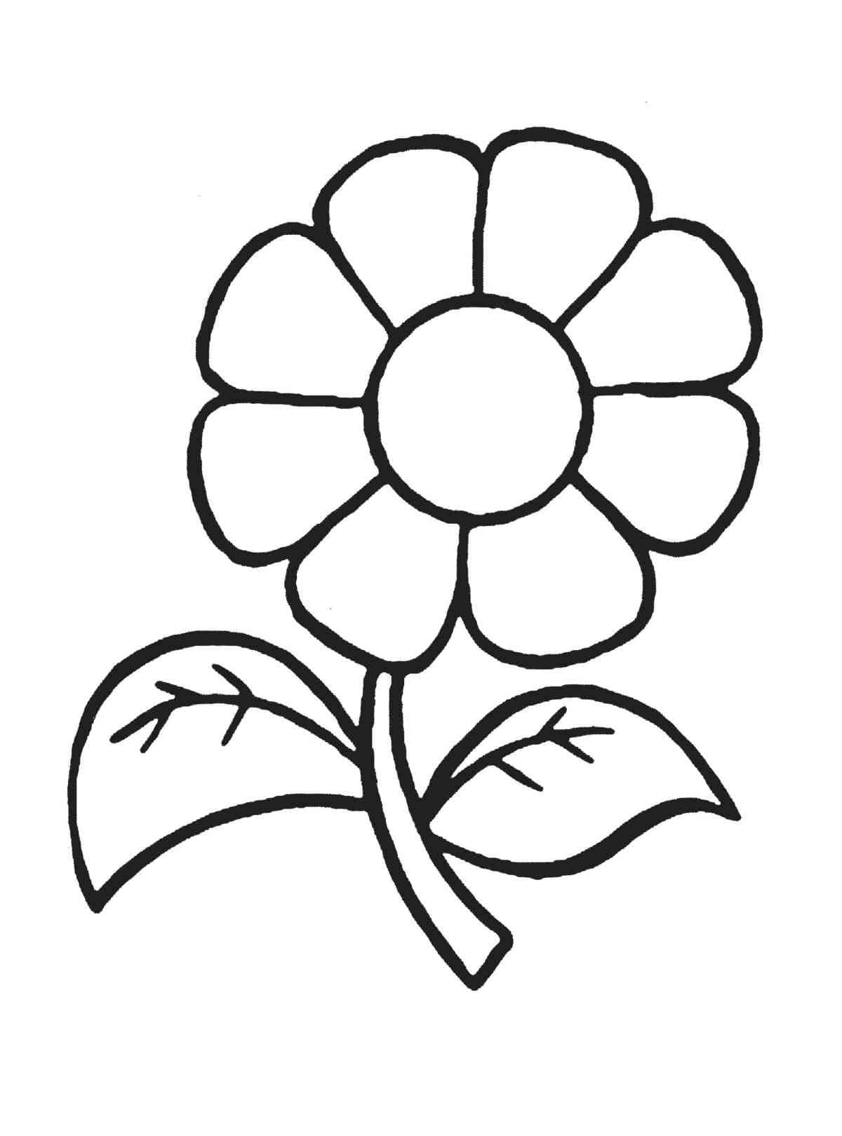 coloring pictures for 2 year olds coloring pages for 6 year olds free download on clipartmag pictures for coloring 2 olds year