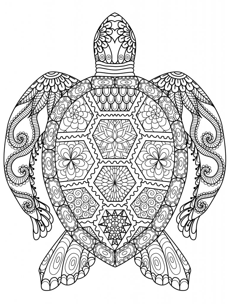 coloring pictures for adults adult coloring pages animals best coloring pages for kids pictures for adults coloring