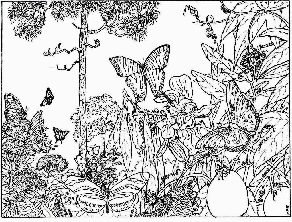 coloring pictures nature free printable nature coloring pages for kids best coloring nature pictures 1 1