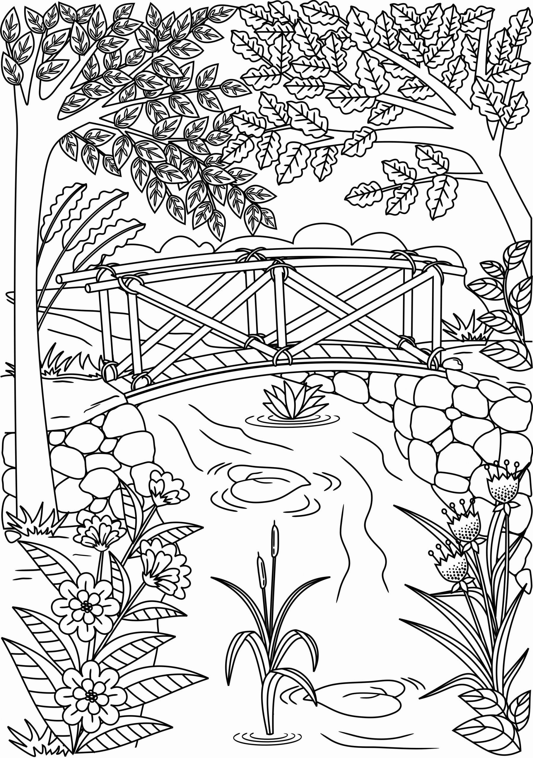 coloring pictures nature printable nature coloring pages for kids coloring pictures nature 1 1