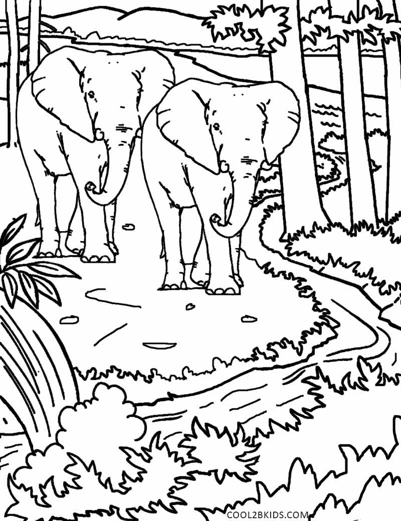 coloring pictures nature printable nature coloring pages for kids cool2bkids coloring pictures nature