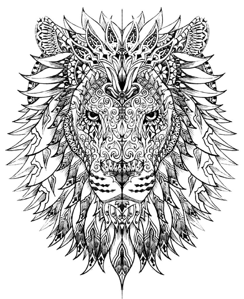 coloring pictures of animals adult coloring pages animals best coloring pages for kids animals pictures of coloring