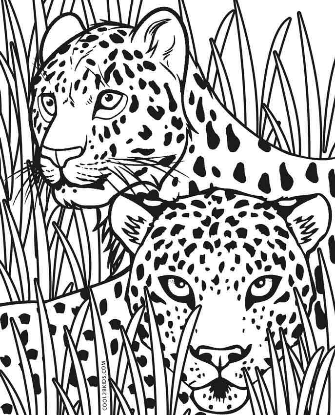 coloring pictures of cheetahs printable cheetah coloring pages for kids cool2bkids of pictures coloring cheetahs