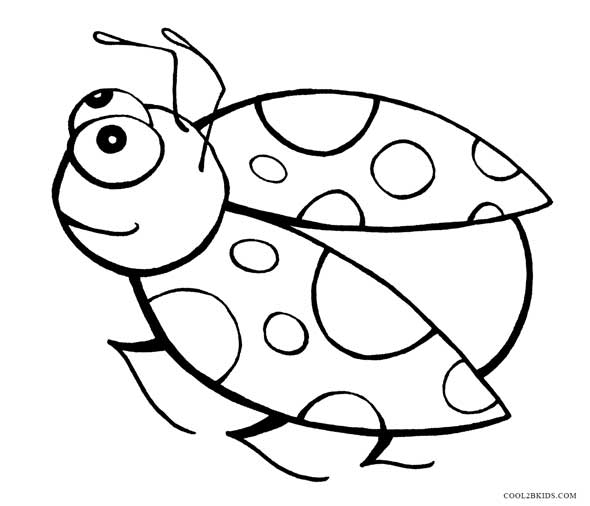 coloring pictures of insects best ladybug outline 21892 clipartioncom insects of coloring pictures