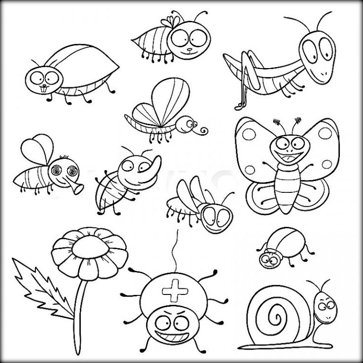 coloring pictures of insects insects coloring pages of coloring insects pictures