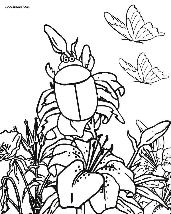 coloring pictures of insects printable bug coloring pages for kids cool2bkids insects coloring pictures of