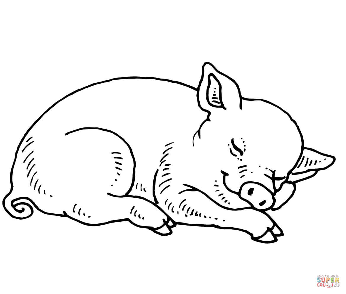 coloring pictures of pigs free printable pig coloring pages for kids cool2bkids of pictures pigs coloring