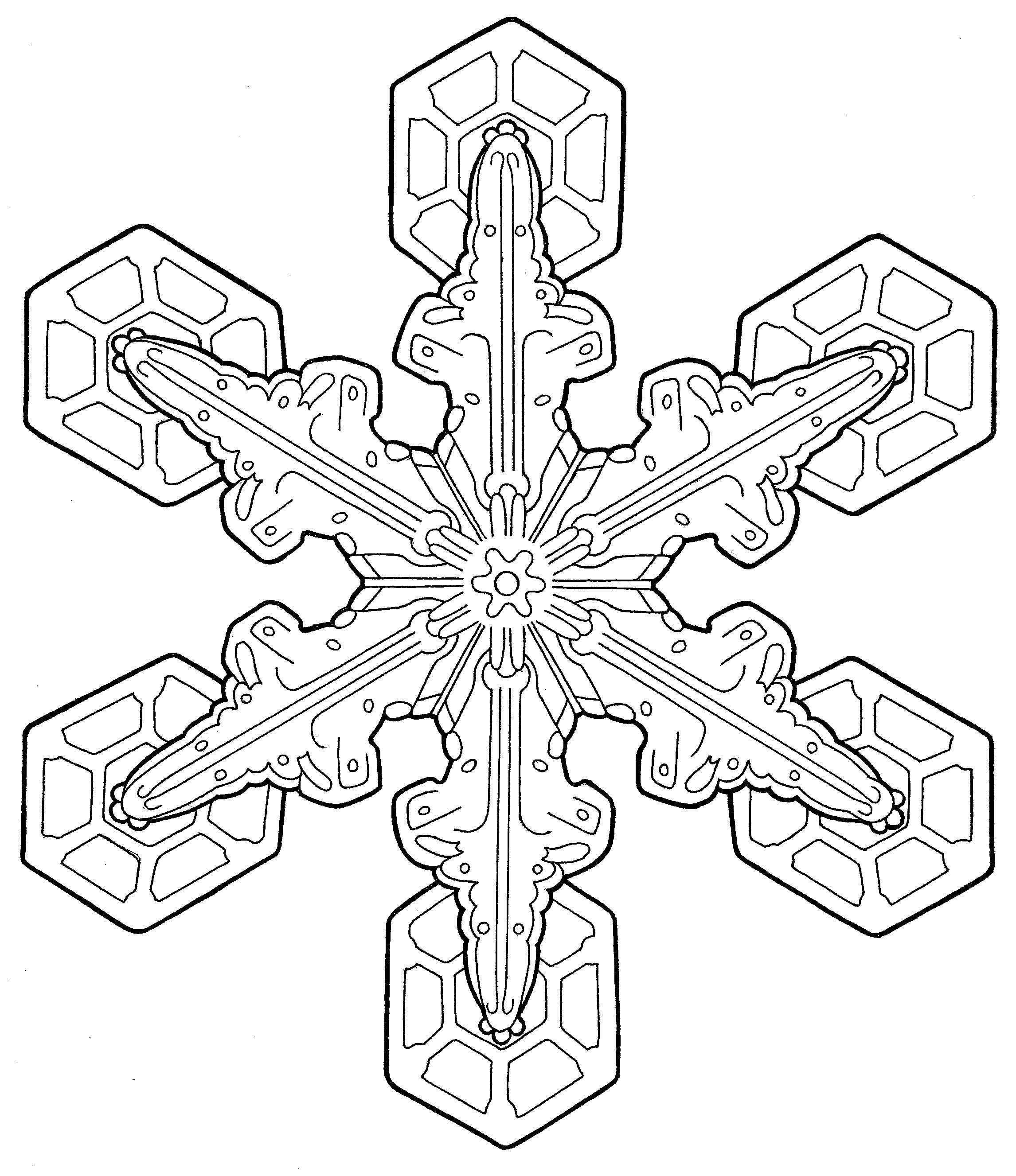 coloring prints for adults free printable geometric coloring pages for adults for coloring adults prints