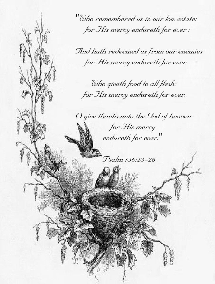 coloring psalm 8 psalm 8 coloring page coloring pages psalm 8 coloring