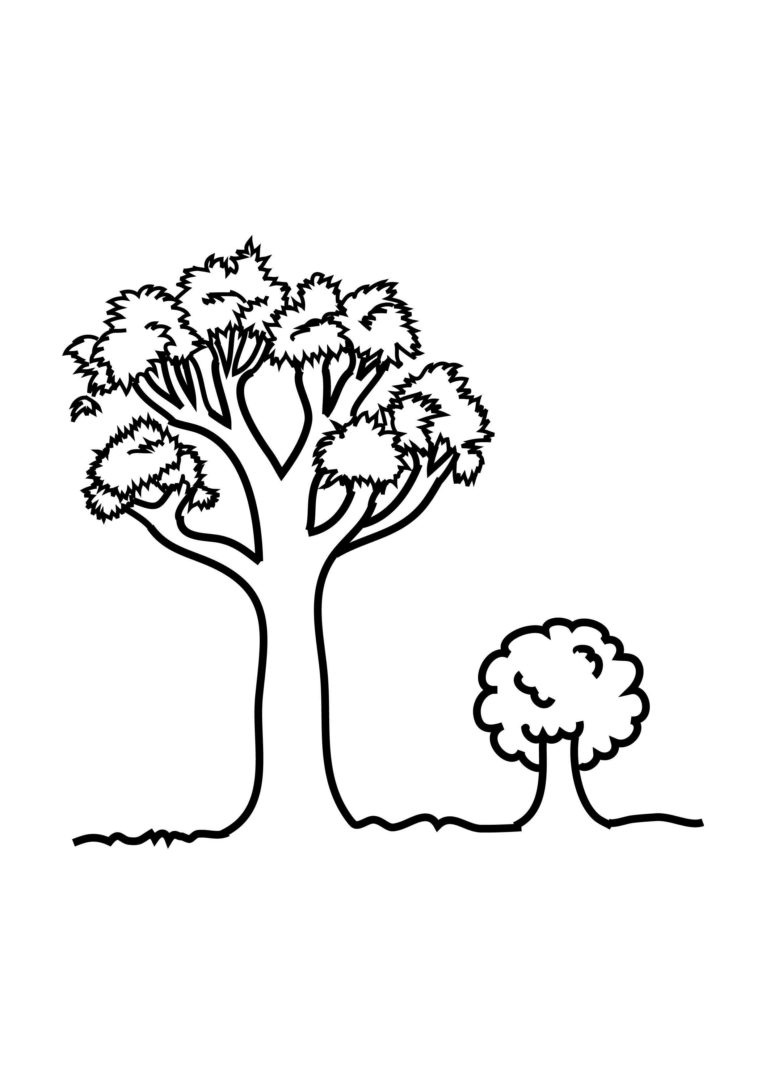coloring sheet of a tree free printable tree coloring pages for kids of a sheet tree coloring