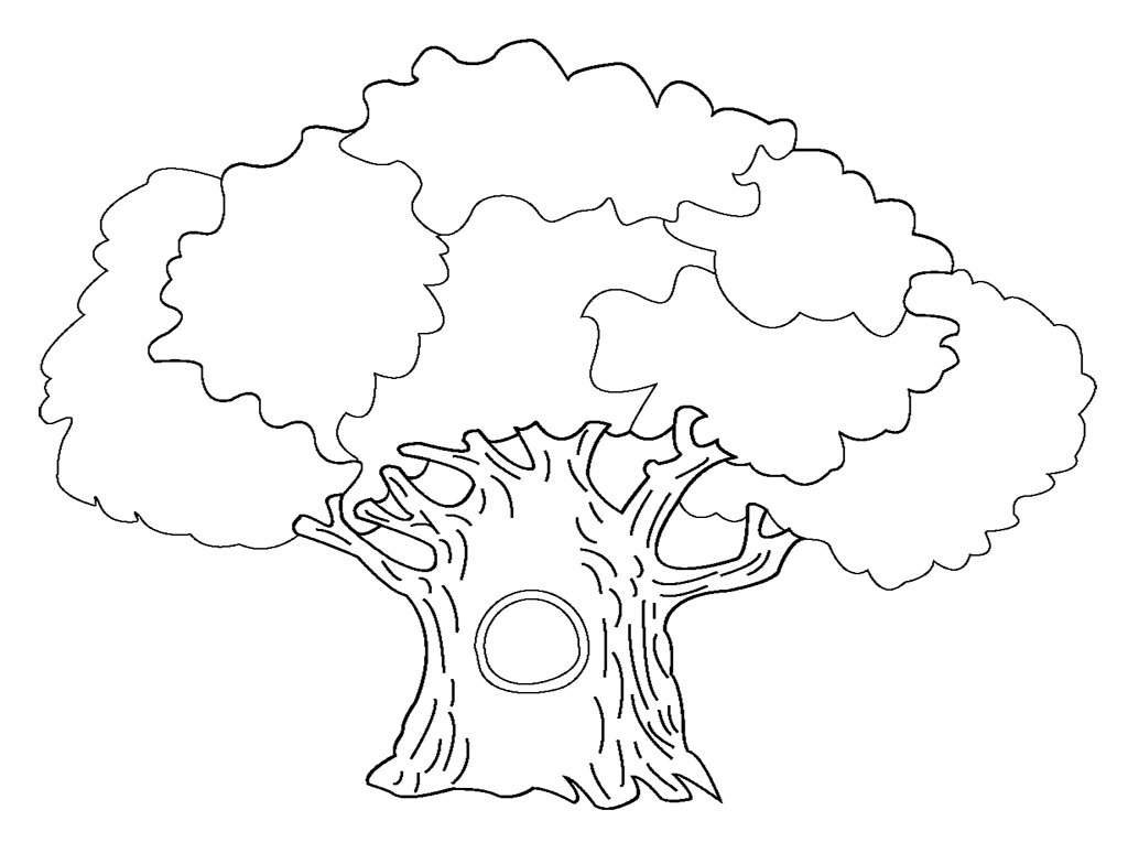 coloring sheet of a tree trees coloring pages download and print trees coloring pages a sheet tree of coloring