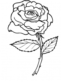 coloring sheet rose flower coloring pages free printable roses coloring pages for kids sheet flower pages coloring coloring rose