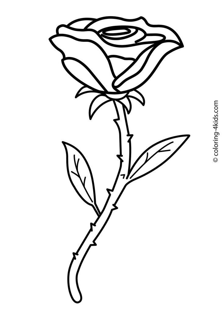 coloring sheet rose flower coloring pages free roses printable adult coloring page the graphics fairy rose sheet coloring flower pages coloring