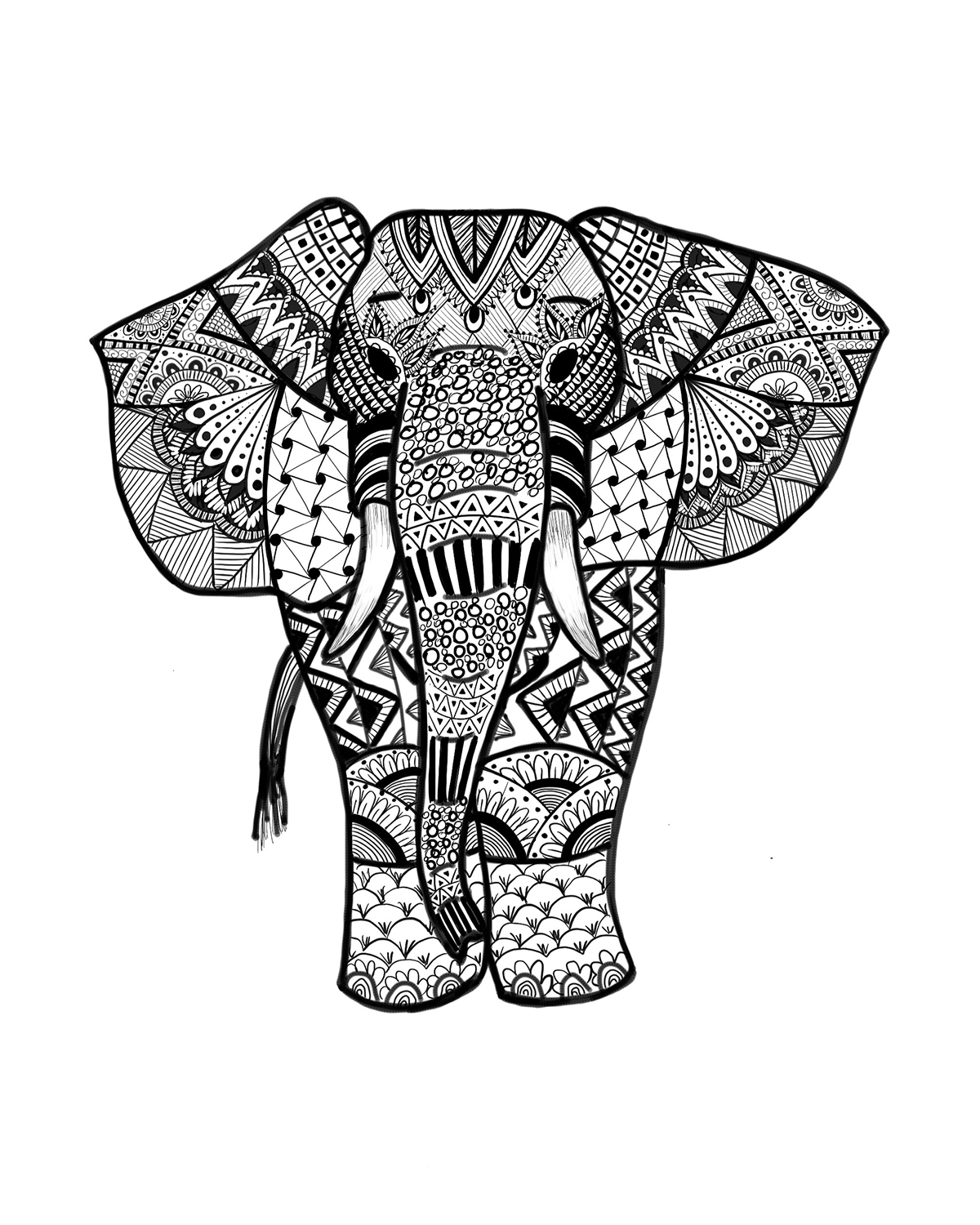 coloring sheet things to color elephant coloring pages for adults best coloring pages things coloring to color sheet