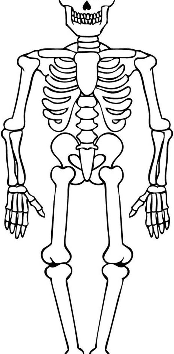 coloring skeleton pictures free printable dancing skeleton coloring picture pictures coloring skeleton