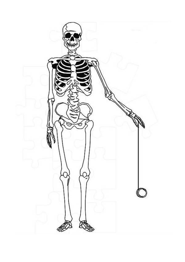 coloring skeleton pictures skeleton coloring page coloring home skeleton pictures coloring