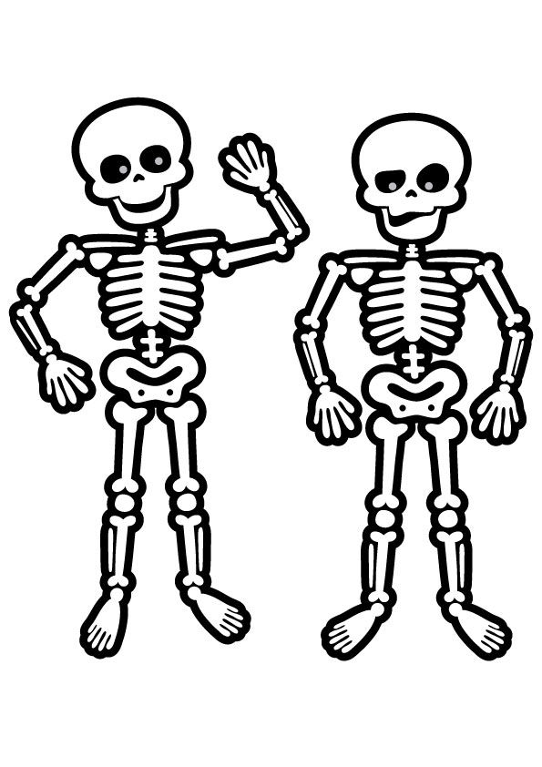 coloring skeleton pictures whole skeleton picture sketch drawing coloring page pictures coloring skeleton