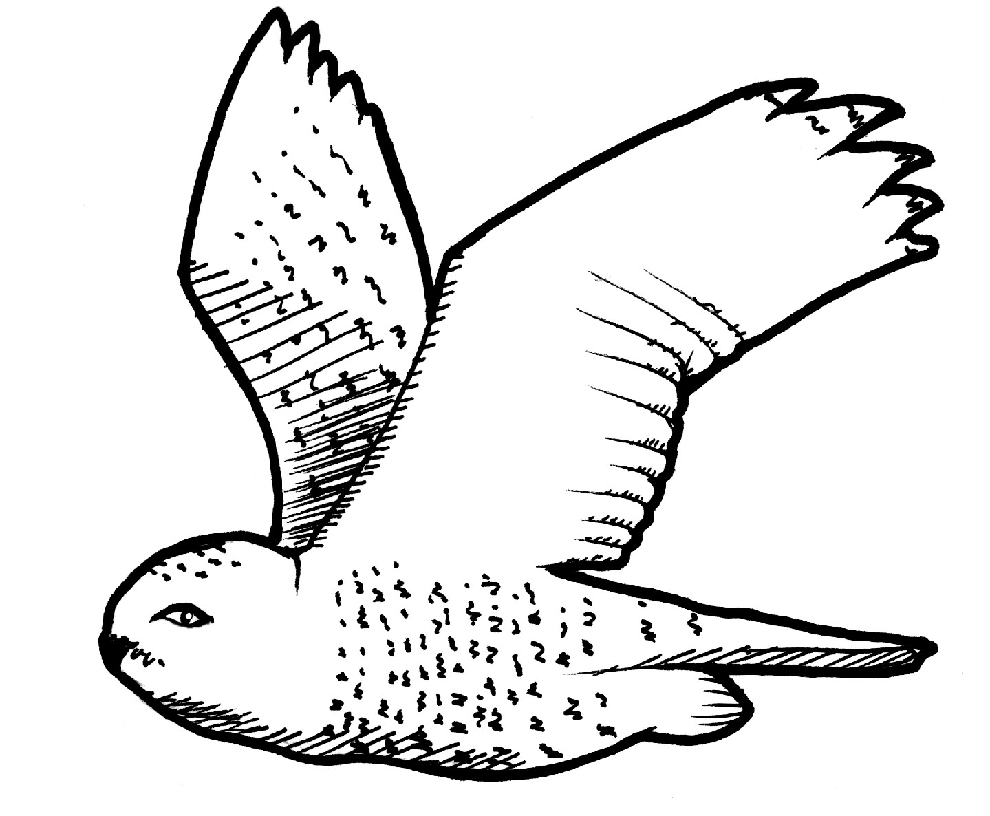 coloring snow white birds bird coloring pages snow white birds coloring