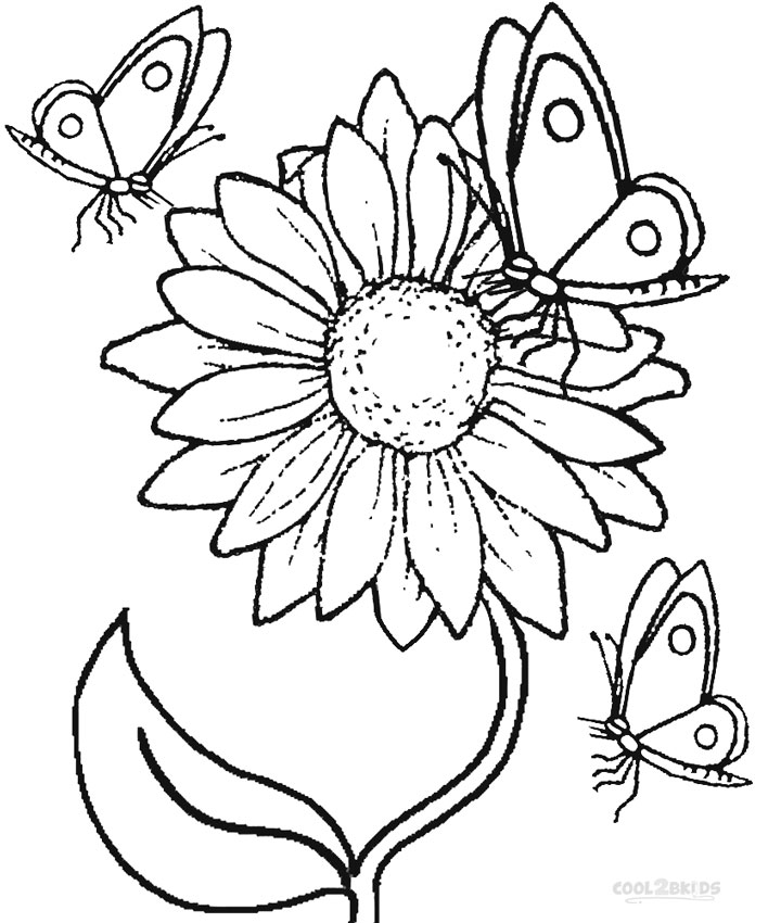coloring sunflower picture sunflower coloring pages sunflower coloring picture