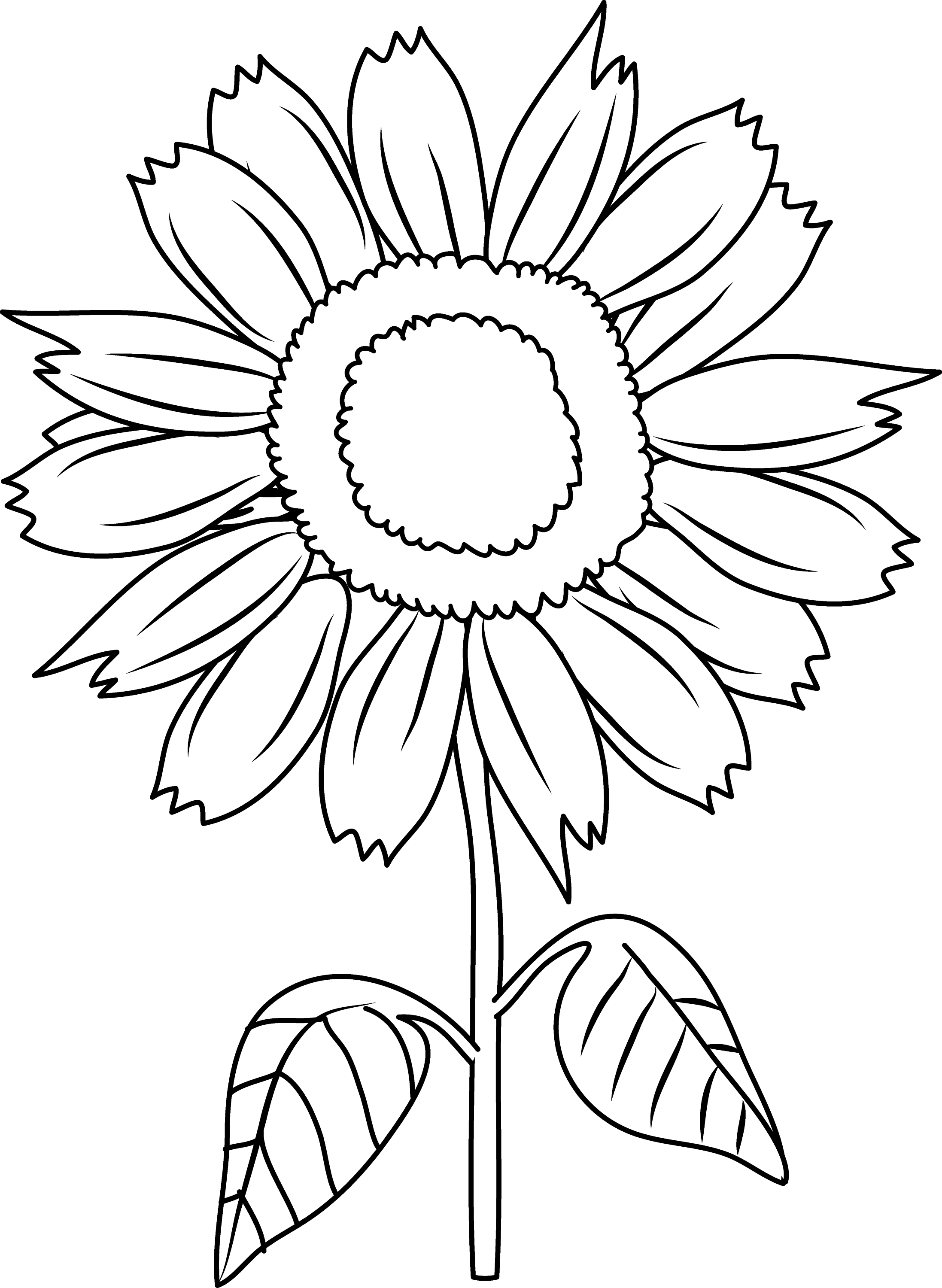 coloring sunflower picture sunflower drawing color at getdrawings free download coloring sunflower picture