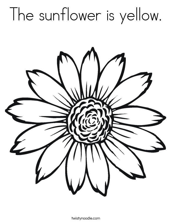 coloring sunflower picture the sunflower is yellow coloring page twisty noodle picture coloring sunflower