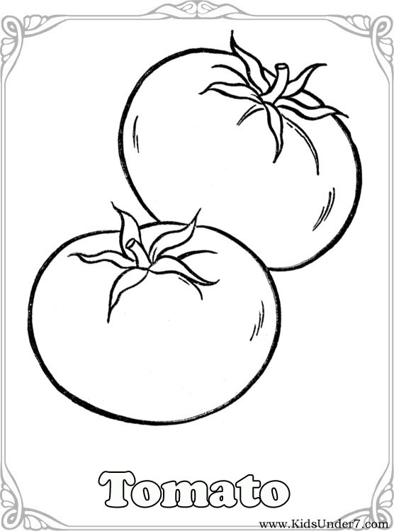 coloring tomato outline two tomatoes coloring page supercoloringcom tomato outline coloring