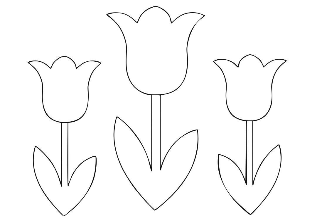 coloring tulip template 14 tulip coloring page print color craft template coloring tulip